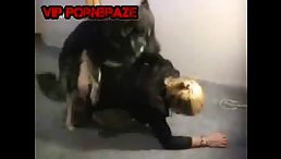 free animal porn - blonde raped by dog on floor